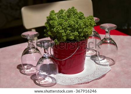 table in a cafe, serving table in a cafe, Empty outdoor restaurant table, Empty glasses in restaurant, dwarf tree on a table in a cafe, Ornamental dwarf plant red vase on table - stock photo
