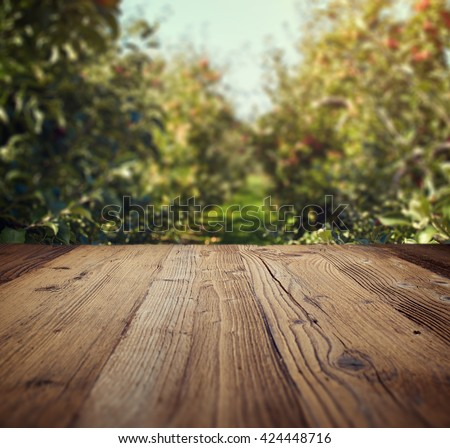 table space and apple garden of trees and fruits  - stock photo