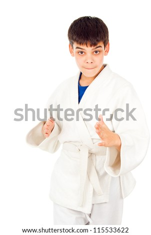 Taekwondo class boy isolated on a white background - stock photo