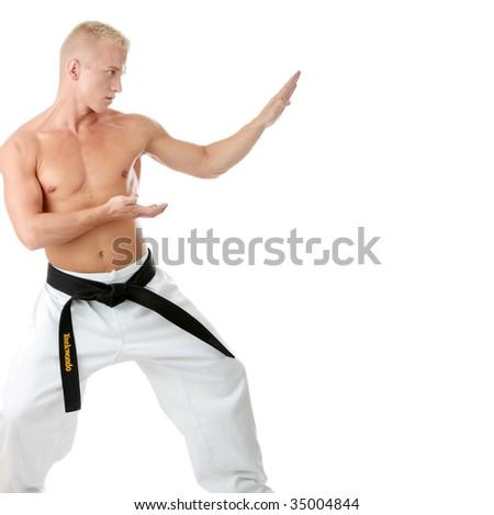 Taekwondo fighter isolated on white background - stock photo