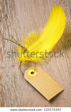 Tag label with feather. Low price concept - stock photo