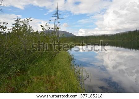 Taiga lake. Lake view on the Putorana plateau, Taimyr, Siberia, Russia. - stock photo