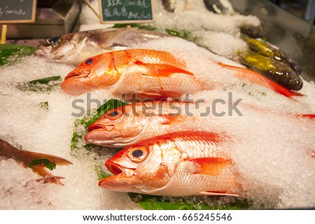 Aquatic products stock images royalty free images for Names of fish to eat