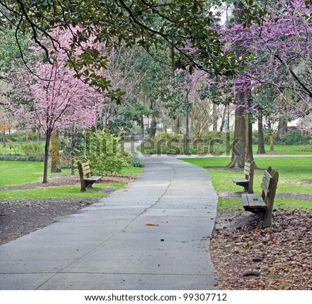 Take a stroll through a beautiful Southern park - stock photo