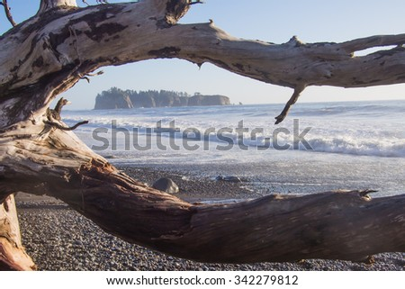 Taken at Rialto Beach in the Olympic National Park in Washington