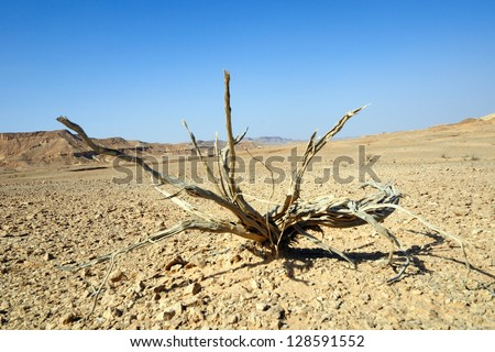 Taken in the southern stretch of the Arava(Arabah), Israel. - stock photo