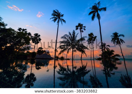 Tall coconut palm trees at twilight sky reflected in water. Picturesque romantic sunset or sunrise scene on Koh Samui island, Thailand