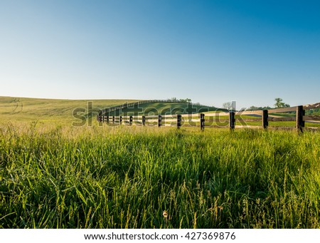 Tall Dewy Grass in Rolling Hills of Kentucky along a black fence - stock photo