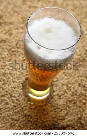 Tall glass of light beer standing on barley malt grains - stock photo