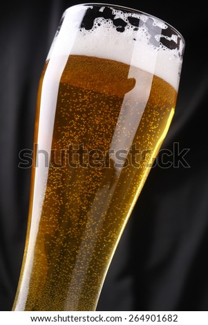 Tall glass of sparkling lager beer over a dark background