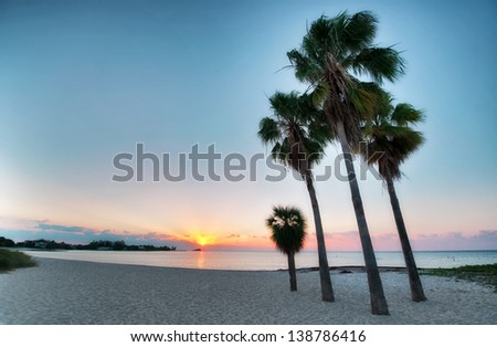 Tall palms on a beach at Florida Keys Islands. USA. - stock photo