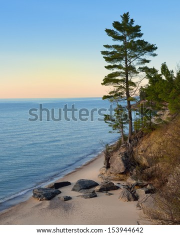 Tall Pine tree sunset on Lake Superior Pictured Rocks National Lakeshore - stock photo