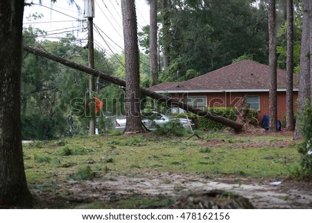 Tallahassee, FL - September 2016 - In the aftermath of hurricane Hermine, 80,000 residents and businesses left without power in Tallahassee. Cleaning and recovery started by the daylight.