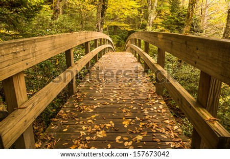 Tanawha trail bridge in the Autumn landscape of the Blue Ridge Mountains near Blowing Rock, North Carolina - stock photo