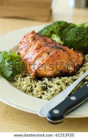 Tandoori Chicken Breast Dinner - stock photo