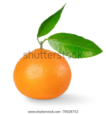Tangerine with leaves isolated on white - stock photo