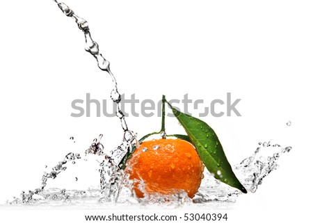 Tangerine with water splash isolated on white - stock photo