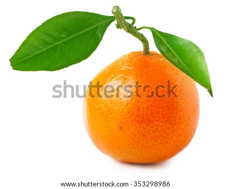 Tangerines with green leaves isolated on white background.