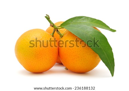 tangerines with leaves isolated on white - stock photo