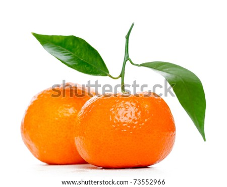 Tangerines with leaves isolated over white - stock photo