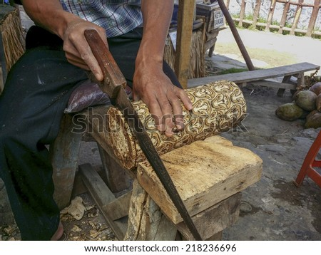 TANGKUBAN PERAHU, BANDUNG, WEST JAVA, INDONESIA - SEPTEMBER 15, 2014: Unidentified man saw off part of batik wood. The unique texture of the wood only grown here in Tangkuban Perahu.
