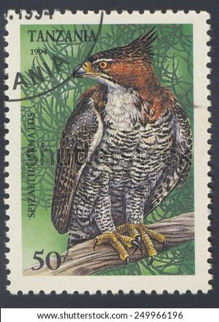 TANZANIA - CIRCA 1994: A stamp printed in Tanzania shows Spizaetus ornatus, circa 1994 - stock photo