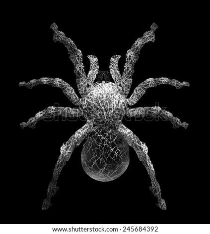 Tarantula spider in cobweb form.It Isolated on black ,give feeling creepy haunted - stock photo