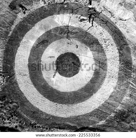 Target on the old tree trunk cut. Aged photo. Black and white. - stock photo