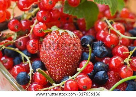 Tasty and healthy berries -red currants, strawberries and blueberries - stock photo