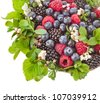 tasty  berries with flowering plant isolated on a white background - stock photo