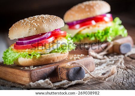 Tasty burger  with vegetables and fried egg - stock photo