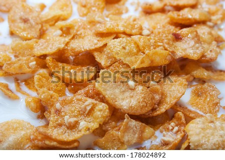 Tasty golden corn flakes with nuts in milk