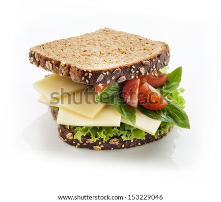 Tasty gourmet sandwich in whole grain bread - stock photo