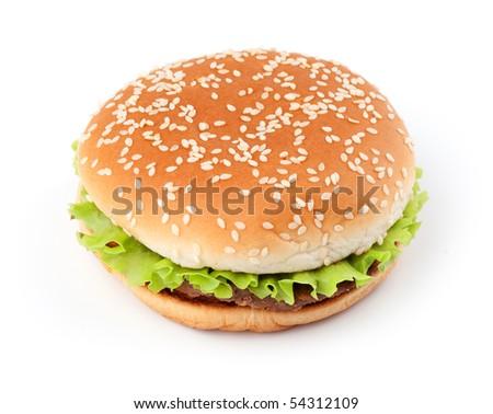 Tasty hamburger isolated on white background - stock photo