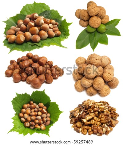 Tasty nutlets - stock photo