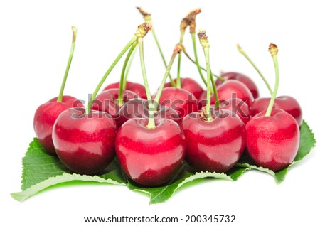Tasty ripe cherry berries juicy and sweet fruits on green fresh leafage isolated on white - stock photo