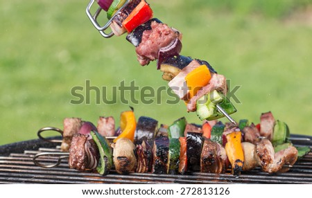 Tasty skewers on the grill, close-up. - stock photo