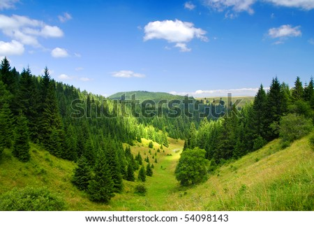 Tatras Mountains covered by green pine forests, Slovakia - stock photo