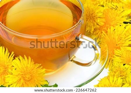 tea dandelion  - stock photo