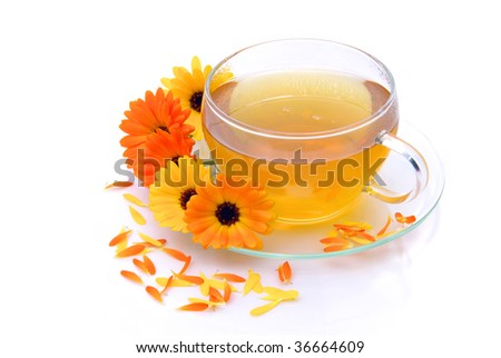 tea marigold - stock photo
