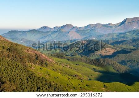 Tea plantation valley at sunrise in Munnar. Kerala. India - stock photo