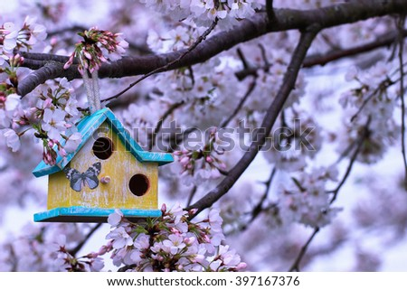 Teal blue and yellow birdhouse hanging from spring flowering tree branch; white blossoms blurred in background - stock photo