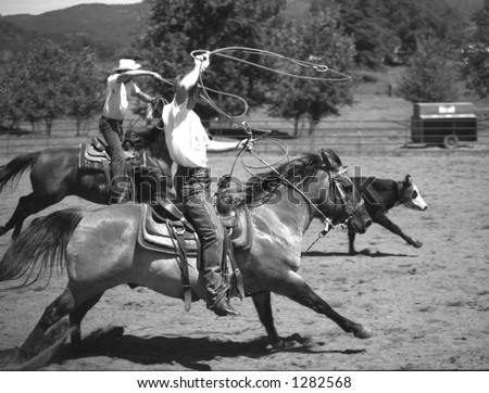 team roping - stock photo