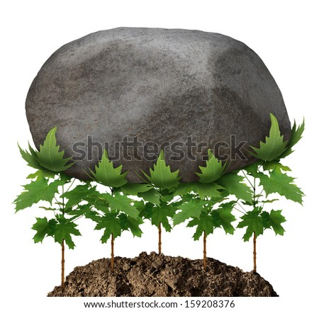 Team strength business metaphor and partnership concept with a group of young tree saplings working together as an organized company resulting in the ability to lift a heavy rock obstacle. - stock photo