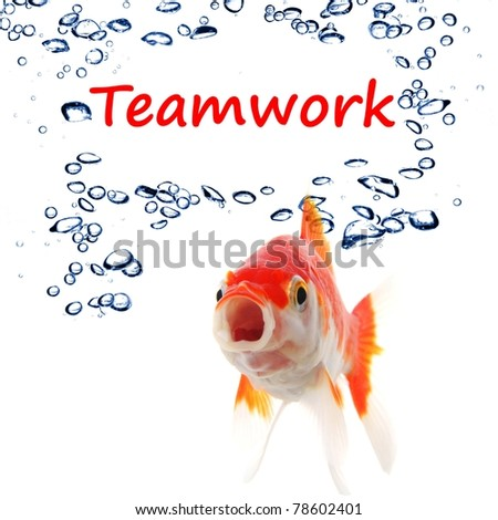 teamwork or team concept with word and goldfish on white