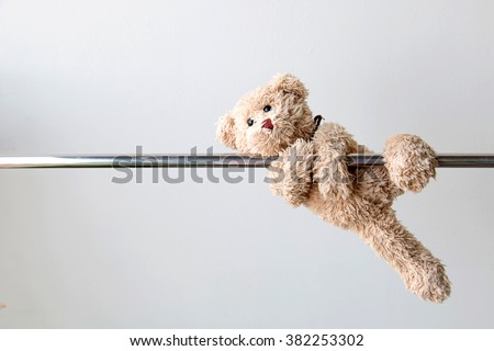 teddy bear  - stock photo