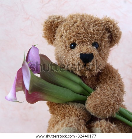 teddy bear holds a bunch of fresh pink calla lilies - stock photo