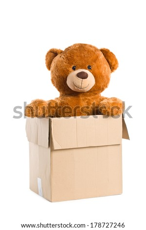 teddy bear in paper box on white background - stock photo