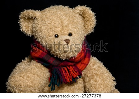 Teddy bear in scarf close up portrait on black background