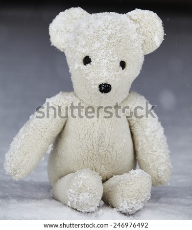 Teddy bear sitting on snow on front porch